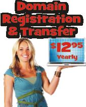 domain price 2